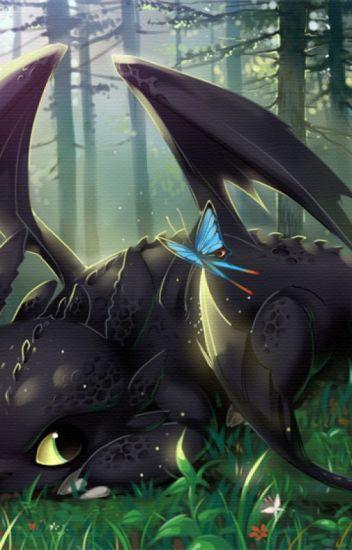 Hiccup X Half Night Fury! Reader X Toothless - Dwarf - Wattpad