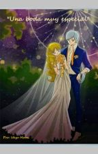 Una boda muy especial (Sailor Moon) by UkyoMoon