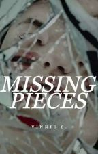 Missing Pieces  by dracaarys
