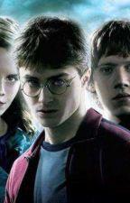 Harry Potter E La Pietra Filosofale by Giorgiooooc