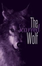 The Scarred Wolf by Walking_Smile