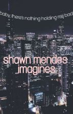 SHAWN MENDES - IMAGINY🎸 by apilaud