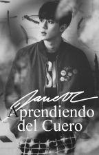 Aprendiendo del Cuero [HunHan] by Vaan01