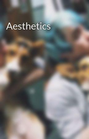 Aesthetics by Noah_Whatever