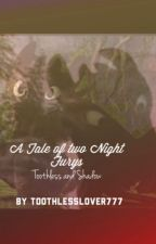 A tale of two Night Fury's: Toothless and Shadow by ToothlessLover777