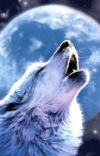 Wolf (IN PAUSA) by gretadesimone