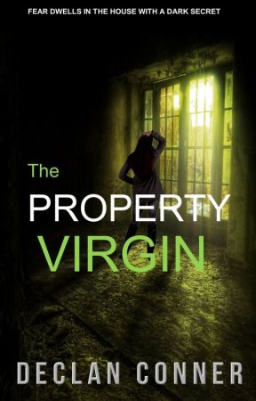 The Property Virgin: And The House with a Dark Secret. by DeclanConner