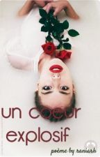 Un Coeur Explosif  by raniarh