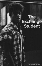 The Exchange Student (A Mazzi Maz Fan Fiction) by avonsarianax