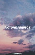 picture perfect // destiel textfic by deanmonz