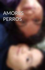 AMORES PERROS by CinDiacono