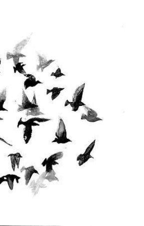 Birdie by Javairiaq