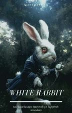 White Rabbit |vmin&yoonkook| ✓   by notthatbad