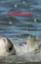 Tainhas by user87346486