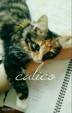Calico _ Kookmin by Mima_Walid