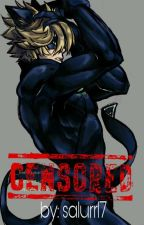 censored: (chat noir y tu) by salurr17