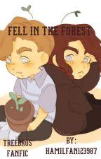 Fell in the Forest ( A Dear Evan Hansen Fan Fic ) by hamilfan123987