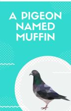 A Pigeon Named Muffin by 1112815e