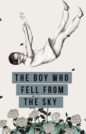 The Boy Who Fell From the Sky by SUNDAYSTORMS