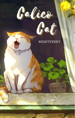 VMin | Calico cat