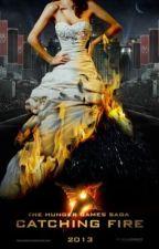 Catching Fire: Peeta's Story.... by Small_Fry611