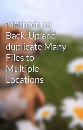 Methods to Back-Up and duplicate Many Files to Multiple Locations by girls3mall