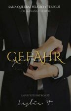 Gefahr || Larry Stylinson [omegaverse] by YouWereMyDream_01