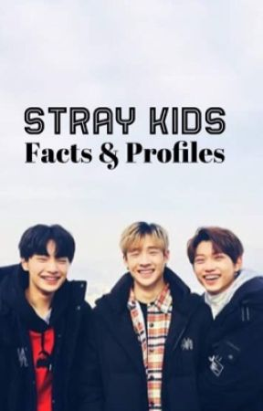 Stray Kids Facts and Profiles by greklytch