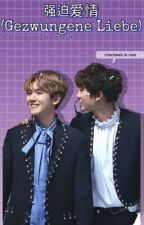 Gezwungene Liebe -Chanbaek by ChanyeolsxShit