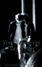 You Can Never Say Never | l.s.| (PARADA) by justshipping