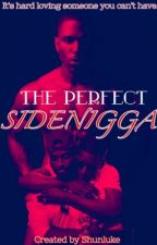 The Perfect Side-N*gga {on Hold) by shunlukesonstories