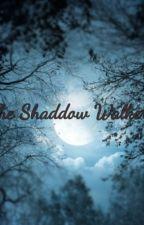 The Shadow walkers by nobutigotcheezewiz