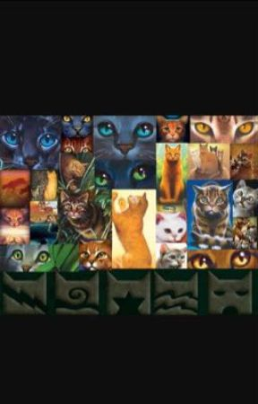Warrior cats rp  by dovewing32931