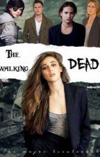 Walking dead by bellspop38