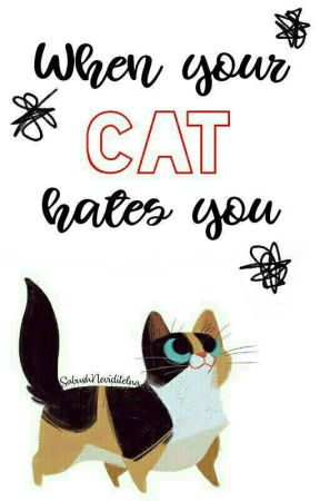 When your cat hates you by SabushNeviditelna
