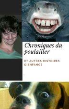 Chroniques du poulailler by jesuislogique