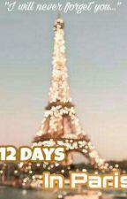 12 Days In Paris by vinshanshipper
