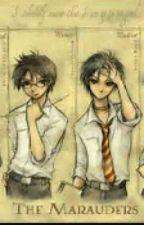 Harry Potter Rumtreiberzeit Rpg by _PerniciesDroVisRhae
