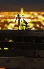 Miraculous: Chat Noir x Reader by AnimeMarinette