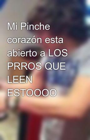 Mi Pinche corazón esta abierto a LOS PRROS QUE LEEN ESTOOOO by PosnoseXD