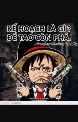 One Piece Chế
