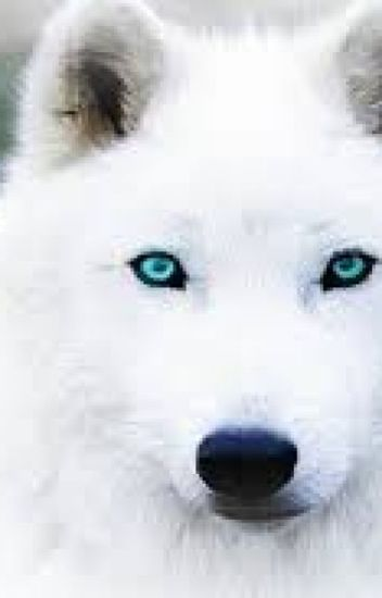 Spirit Animals - Olivia Sage Krista Trovik - Wattpad