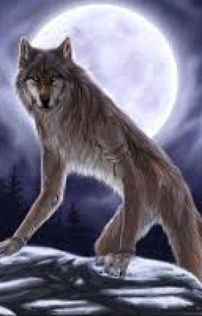 Werewolf Sightings / Who Killed Bob Crane? by HeartsLessAnGeL
