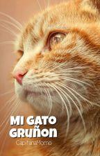 Mi gato gruñón. (l.s) Adaptación. by ilarry_12