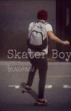 Skater Boy (Larry Stylinson One Shot) by becauseharoldx