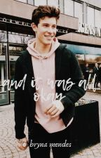 And it was all okay - a Shawn Mendes Fanfiktion by MRSWRITINGMENDESGIRL