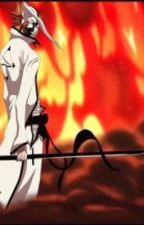 Complete (Sequel to Hollowed: Bleach Fanfic) by leahlozer