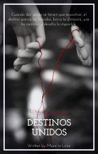 Destinos Unidos by MMoon_in_love