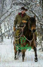 O Cowboy  by roseaneaparecida1800