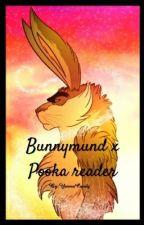 Bunnymund x Pooka reader by YannaCandy